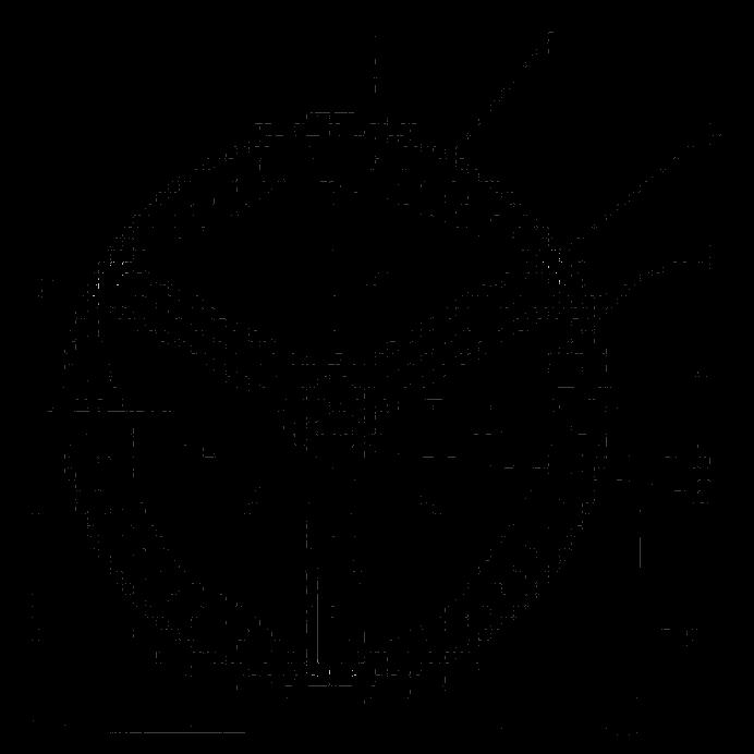 MAXI-PRESS-Prinzip aus Patentschrift